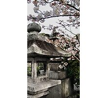 Lantern and the Love Photographic Print