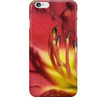 Red Lily Stamens iPhone Case/Skin