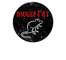 We are Mouse Rat! Photographic Print