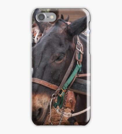 Reliable Transport  iPhone Case/Skin