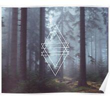 Geometric Trees Poster