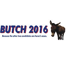 Butch the Donkey 2016 Photographic Print