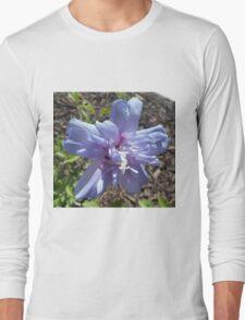 Blue Chiffon T-Shirt