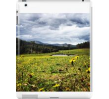 A field of spring daisies iPad Case/Skin