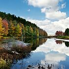 Beautiful Autumn Reflection Landscape by Christina Rollo