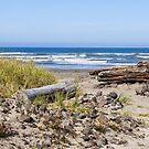 Peaceful Pacific by Susan Vinson