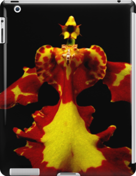 The Warrior - Orchid Alien Discovery by ©Ashley Edmonds Cooke