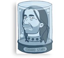 Eddard Stark Metal Print