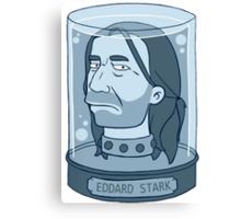 Eddard Stark Canvas Print