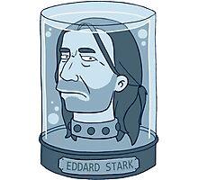 Eddard Stark Photographic Print