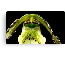 Captain Trips - Orchid Alien Discovery Canvas Print