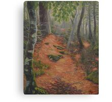 Northern California Mountain Trail Canvas Print