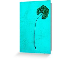 Four Leaf Clover #2 Greeting Card
