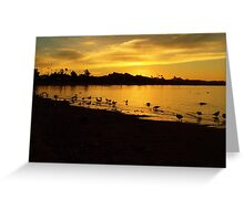 Sunrise Over The Bay. Greeting Card