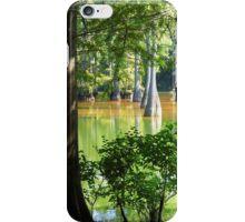 Cypress In Frame iPhone Case/Skin
