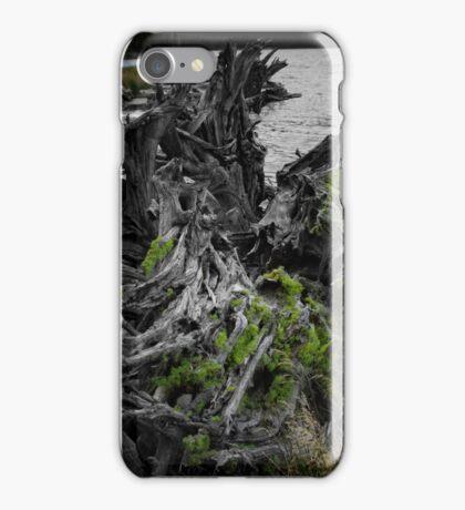 Moss on tree stump iPhone Case/Skin