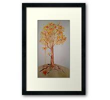Flame Trees Framed Print