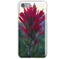 Mountain flower by glacial lake iPhone Case/Skin