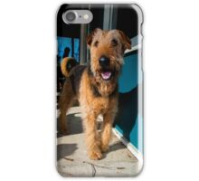 Airedale VII iPhone Case/Skin