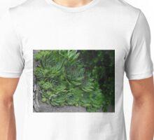 Succulent Patch Unisex T-Shirt