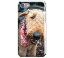 Airedale XXXVI iPhone Case/Skin