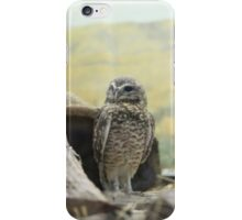In His Natural Habitat iPhone Case/Skin