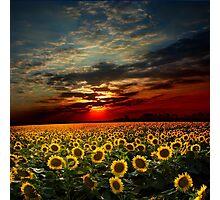 Suns Land Photographic Print