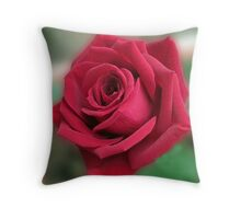 Dreamy Red Rose Throw Pillow