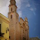 Cathedral de San Ildefonso by Yukondick