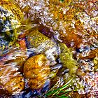 Gore Creek Abstract 1 by AlexandraZloto