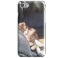 Sleeping kittens iPhone Case/Skin