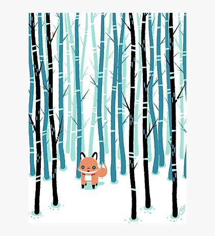 Fox in the Forest Photographic Print