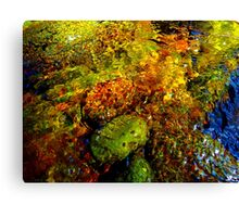 Gore Creek Abstract 21 Canvas Print