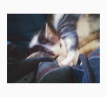 Sleepy Kitty One Piece - Short Sleeve