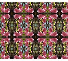 cherry blossom pattern 01 Photographic Print