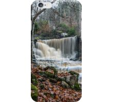 Hunneberg Waterfall iPhone Case/Skin