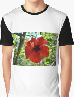 Red hibiscus flower and green leaves background Graphic T-Shirt