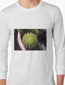 Small cactus in the pot Long Sleeve T-Shirt