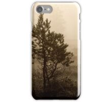 16.8.2014: Pine Trees, Summer Morning iPhone Case/Skin