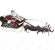 ... In A One-Hippo Open Sleigh by Mythos57