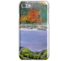 Morning fog at the river enns iPhone Case/Skin