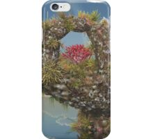 Piece of Coral iPhone Case/Skin