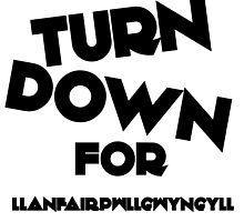 Turn Down For Llanfairpwllgwyngyll W by stevemcqueen1