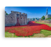 Poppies in the Moat 2 Canvas Print