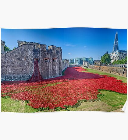 Poppies in the Moat 2 Poster
