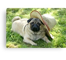 Pug with a hat Canvas Print