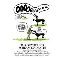Greyhound Glossary: GSOD Photographic Print