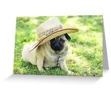 Young pug with a hat Greeting Card