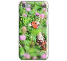 """ Pheasant In Thistles "" iPhone Case/Skin"