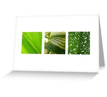 Green Triptych Greeting Card